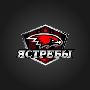 """Хоккейный клуб """"Ястребы"""""""