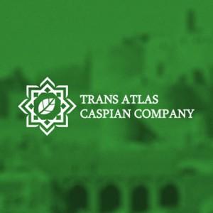 Транс Атлантическая Торговая Компания