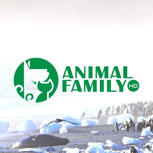 "Кабельный телеканал ""Animal Family"""