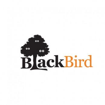 "Рекламное агентство ""Black Bird"""