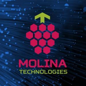 """IT компания """"Molina technologies"""""""