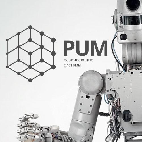 """Разработчик развивающих игр """"PUM"""""""