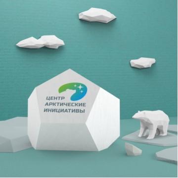 Центр «Арктические инициативы»